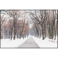 Sihirli Kağıt Doğa Temalı Tablo Kış Statik Tutunma Özellikli Yapıştırma Gerektirmez 117x78cm