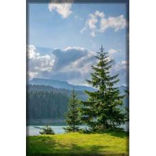 Sihirli Kağıt Doğa Temalı Tablo Ağaç Statik Tutunma Özellikli Yapıştırma Gerektirmez 78x117cm