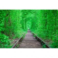 Sihirli Kağıt Doğa Temalı Tablo Sonsuz Yeşillik Statik Tutunma Özellikli Yapıştırma Gerektirmez 117x78cm