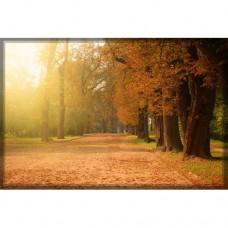 Sihirli Kağıt Doğa Temalı Tablo Sonbahar 2 Statik Tutunma Özellikli Yapıştırma Gerektirmez 175x117cm