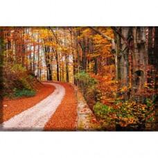 Sihirli Kağıt Doğa Temalı Tablo Sonbahar Yol Statik Tutunma Özellikli Yapıştırma Gerektirmez 175x117cm