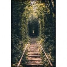 Sihirli Kağıt Doğa Temalı Tablo Tünel Statik Tutunma Özellikli Yapıştırma Gerektirmez 117x175cm