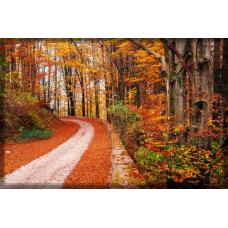 Sihirli Kağıt Doğa Temalı Tablo Sonbahar Yol Statik Tutunma Özellikli Yapıştırma Gerektirmez 117x78cm